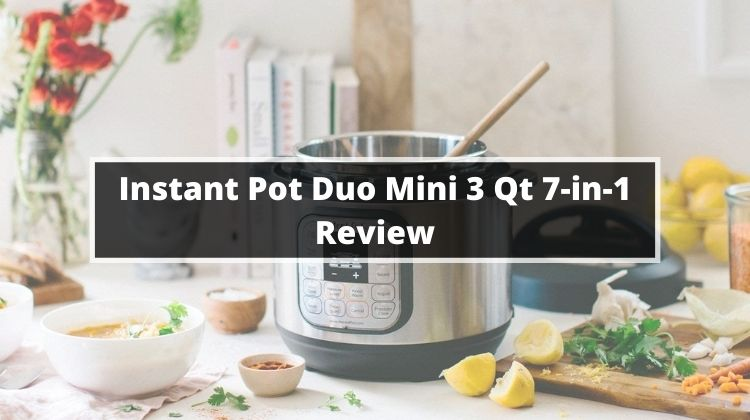 Instant Pot Duo Mini 3 Qt 7-in-1 Review